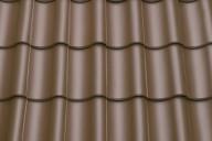 TG 10 орехово-коричневого цвета